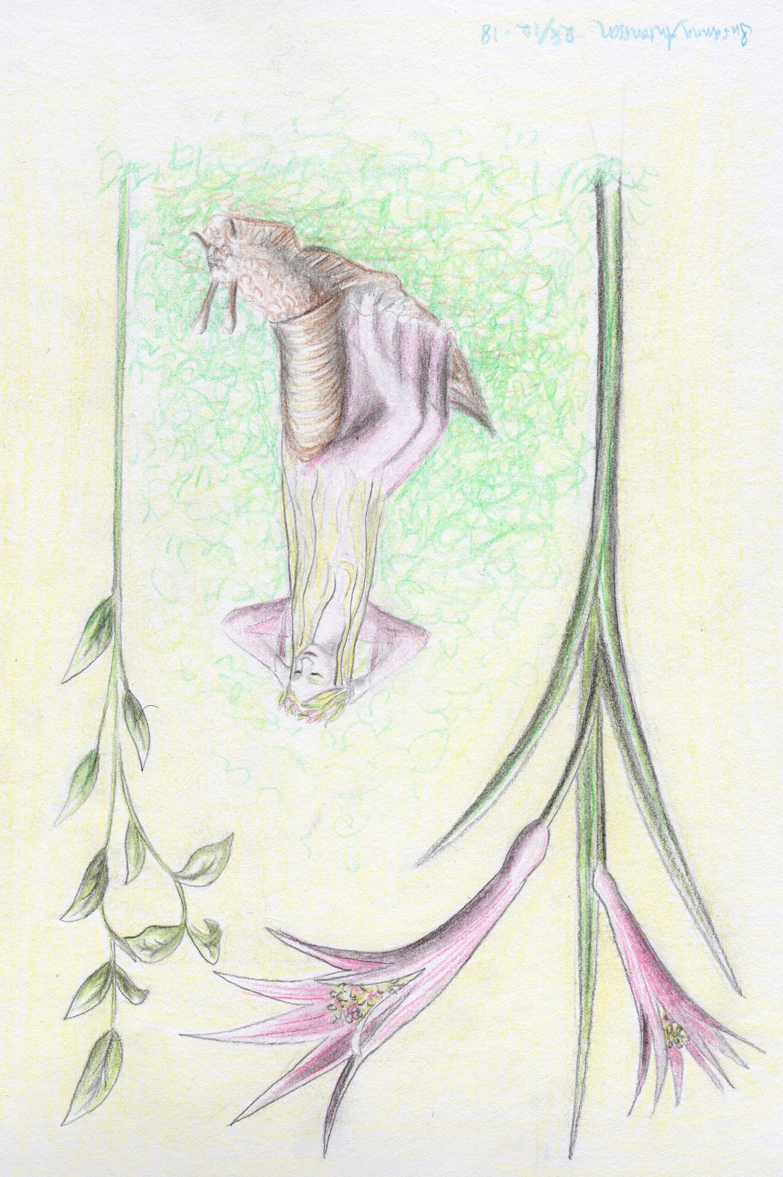 Susanna Art | Susanna Art Blog | Page 2
